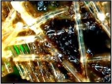 Electrostatic Discharge Analysis-02